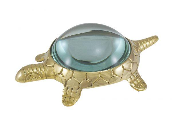 Lupe Schildkröte